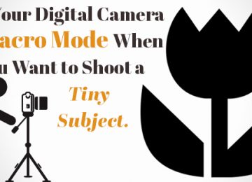 How to Use Your Camera's Special Settings
