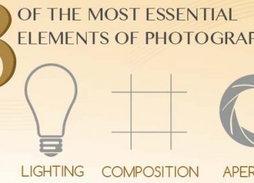 The Most Essential Elements of Photography Boiled Down and Explained