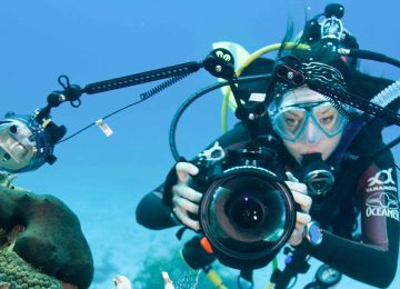 Four Underwater Cameras That Should Be In Your Kit